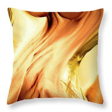 Curves Throw Pillow by Linda Sannuti