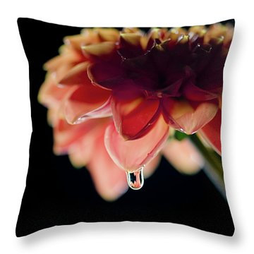 Throw Pillow featuring the photograph Dahlia And Drop by Stefan Nielsen