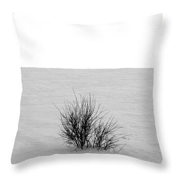 Deep Breath Throw Pillow by Jerry Cordeiro