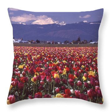 Field Of Tulips And Mount Baker Throw Pillow