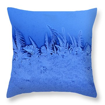Frost Forest Throw Pillow by Thomas R Fletcher