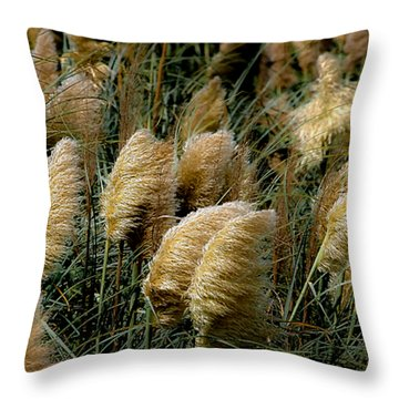 Golden Pampas In The Wind Throw Pillow by DigiArt Diaries by Vicky B Fuller