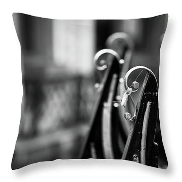 Throw Pillow featuring the photograph Gondolas by Stefan Nielsen