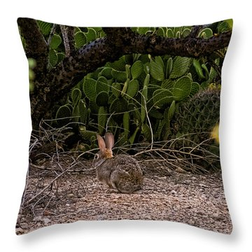 Throw Pillow featuring the photograph Hare Habitat H22 by Mark Myhaver