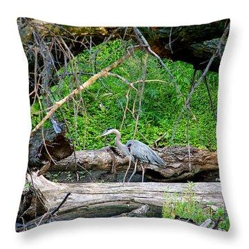 Heron Habitat Throw Pillow by Sue Stefanowicz
