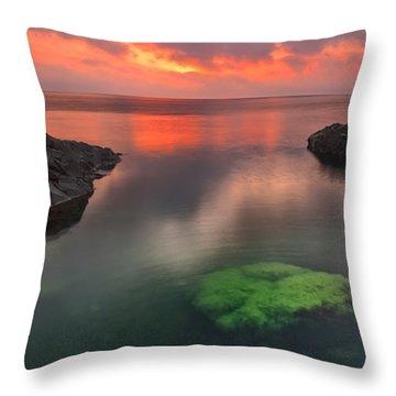 Hidden Green Throw Pillow by Evgeni Dinev