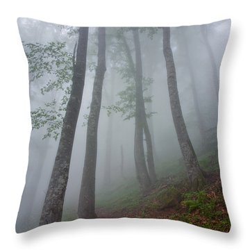 High Forest Throw Pillow by Evgeni Dinev