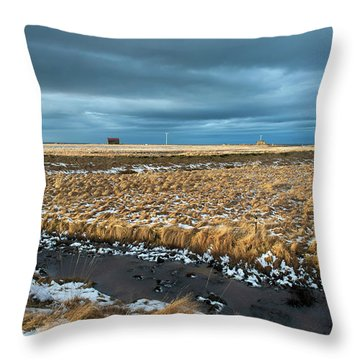 Throw Pillow featuring the photograph Icelandic Landscape by Dubi Roman