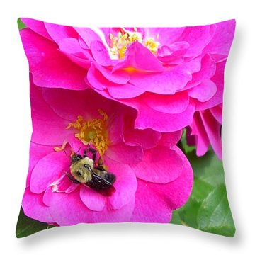 Jc And Bee Throw Pillow by Mary-Lee Sanders