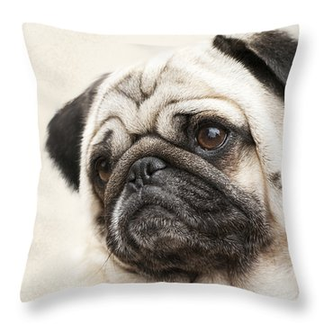 L-o-l-a Lola The Pug Throw Pillow by Kathy Clark
