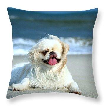 Lifes A Beach Throw Pillow