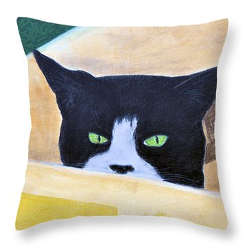 Louie In The Box Throw Pillow by Jan Amiss