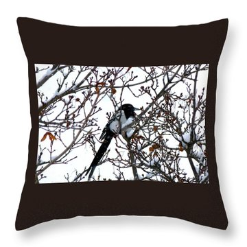 Throw Pillow featuring the photograph Magpie In A Snowstorm by Will Borden