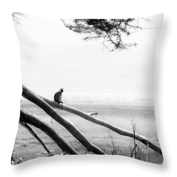 Monkey Alone On A Branch Throw Pillow by Darcy Michaelchuk