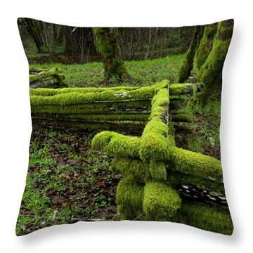 Mossy Fence 4 Throw Pillow by Bob Christopher