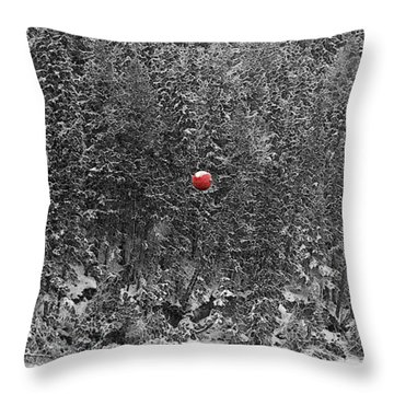 Throw Pillow featuring the photograph Orb by Stuart Turnbull