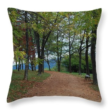 Pathway Throw Pillow by Eric Liller