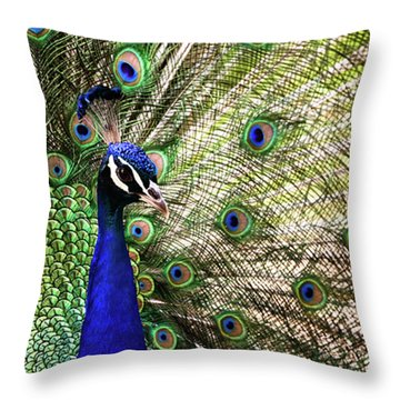 Throw Pillow featuring the photograph Peacock by Stefan Nielsen