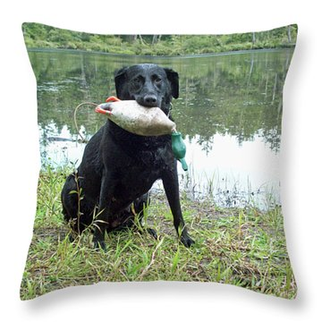 Retrieve Training At Island Lake Throw Pillow by Pamela Patch