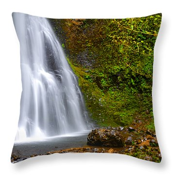 Spring Cascade Throw Pillow by Andrea Hazel Ihlefeld