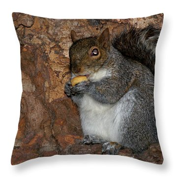Throw Pillow featuring the photograph Squirrell by Pedro Cardona