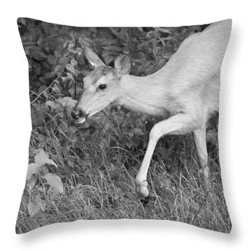 Steppin Out Bw Throw Pillow by Karol Livote