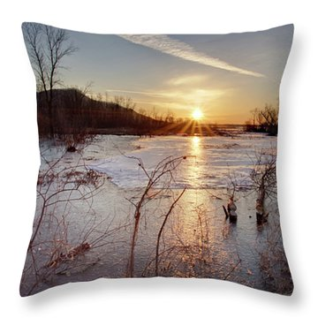 Sunrise At The Refuge Throw Pillow
