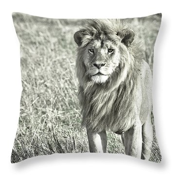 The King Stands Tall Throw Pillow by Darcy Michaelchuk