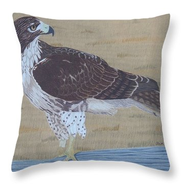 The Sentinel Throw Pillow by Anita Putman