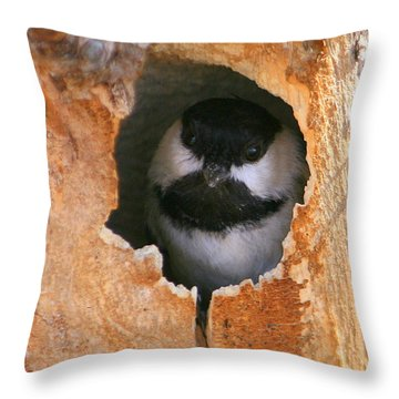 This Is My House Throw Pillow