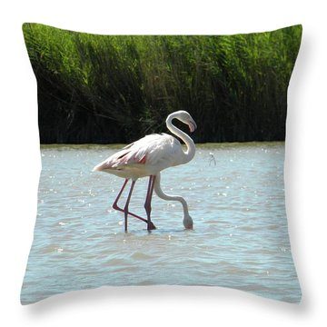 Two Headed Throw Pillow