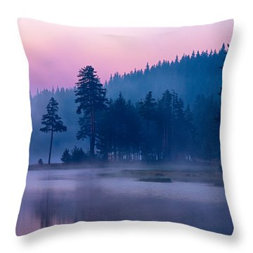 Violet Lake Throw Pillow by Evgeni Dinev