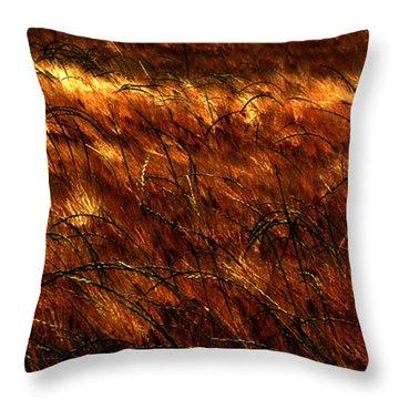 Windblown Throw Pillow by Jessica Brawley
