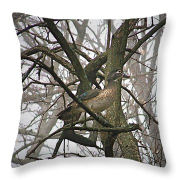 Wood Duck Throw Pillow by Sue Stefanowicz