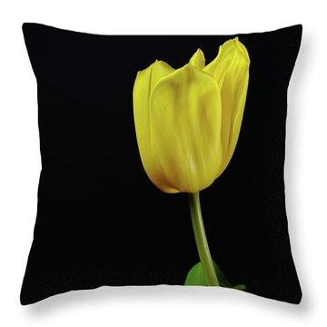 Throw Pillow featuring the photograph Yellow Tulip by Dariusz Gudowicz