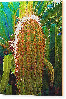 Backlit Cactus Wood Print by Amy Vangsgard
