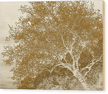 Patience Wood Print by Wendy J St Christopher