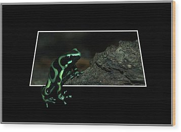 Poisonous Green Frog 02 Wood Print by Thomas Woolworth