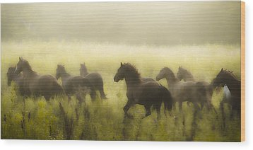 Freedom Wood Print by Ron  McGinnis