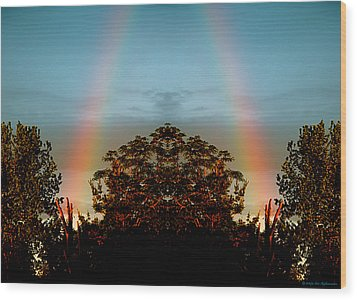 The Rainbow Effect Wood Print by Sue Stefanowicz
