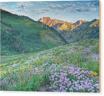 Wasatch Mountains Utah Wood Print
