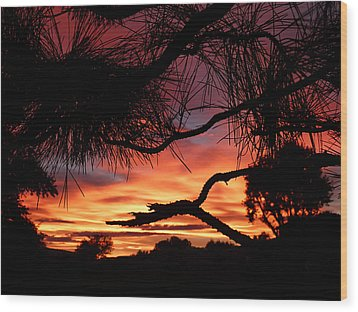 A Wishbone Sunset Wood Print by Cindy Wright