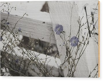 Against The Fence Wood Print by Rebecca Cozart
