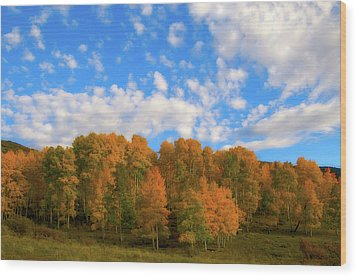 Wood Print featuring the photograph Aspens by Steve Stuller