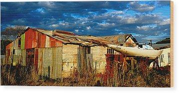 Backyard Australia Wood Print by Tim Nichols