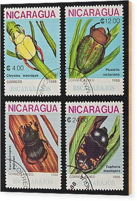 Beetles Stamps Collection. Wood Print by Fernando Barozza