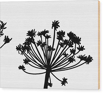 Black And White Dandelion Part 2 Wood Print by Nomi Elboim