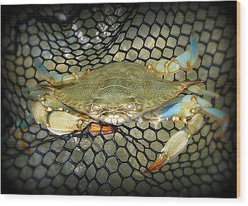 Blue Crab Wood Print