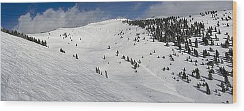Blue Sky Basin Panorama - Vail Colorado Wood Print by Brendan Reals