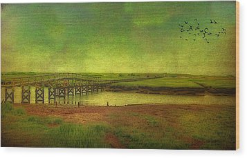 Wood Print featuring the photograph Boardwalk On Cape Cod by Gina Cormier